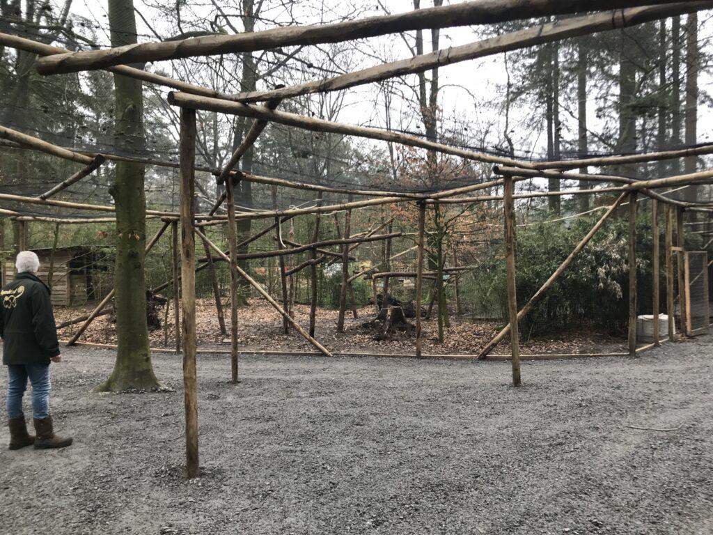 De natuurlijke mensengang door het bos van apen